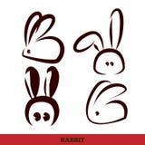 Vector: conejo, escritura de la mano Fotografía de archivo
