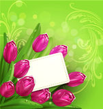 Vector congratulatory background of tulips and car Stock Photo
