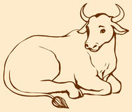 Vector contour illustration of lying cow with big horns. Vector monochrome linear picture of lying cow with big horns Royalty Free Stock Image
