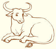 Vector contour illustration of lying cow with big horns Royalty Free Stock Photography