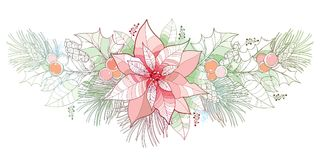 Vector contour Poinsettia flower in pastel color isolated on white background. Horizontal border with outline poinsettia. Vector contour Poinsettia flower in Stock Photo