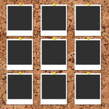 Vector cork board with photo cards and color pin Royalty Free Stock Image