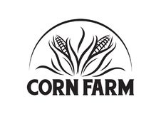Vector Corn farm for company logo royalty free stock photo