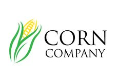 Vector Corn farm for company logo stock image