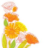 Vector corner bouquet with outline Calendula officinalis or pot marigold, bud, green leaf and orange flower isolated on white. Vector corner bouquet with vector illustration