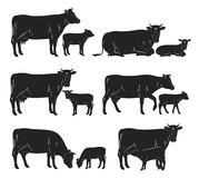 Vector cow and calf black silhouettes. Vector cow and calf silhouettes in different poses isolated on white for farms, groceries, packaging and branding stock illustration