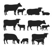 Vector cow and calf silhouettes collection. Vector cow and calf silhouettes isolated on white for farms, groceries, packaging and branding stock illustration
