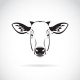Vector of a cow head on white background. Farm Animal Royalty Free Stock Photo