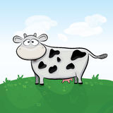 Vector cow illustration Stock Photos
