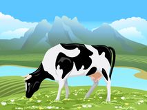 Vector cow and rural meadow landscape Stock Photo
