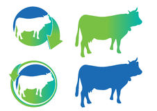 Vector cow silhouettes icons. Cow silhouettes icons - web icons stock illustration