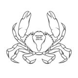 Vector crab illustration Royalty Free Stock Images