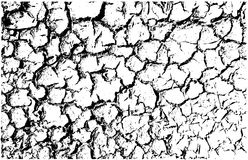 Vector cracked land texture Stock Photo