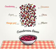 Vector Cranberries Sauce Ingredients Falling Down. Vector cartoon sketched illustration of American Cranberries sauce for Thanksgiving in a bowl on a plaid Stock Images
