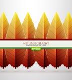 Vector creative autumn background Royalty Free Stock Photos