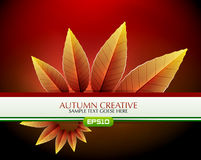 Vector creative autumn background Royalty Free Stock Photography