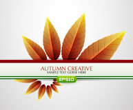 Vector creative autumn background Stock Images