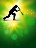Vector cricket background Royalty Free Stock Images