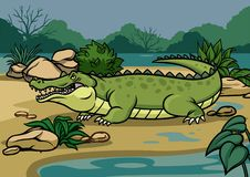 Crocodile illustration in the nature royalty free illustration