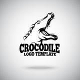 Vector Crocodile logo template for sport teams, brands etc Stock Images