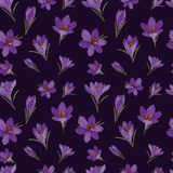 Vector card with crocuses. Vector crocus seamless pattern.  Floral seamless pattern. Flower background. Floral seamless texture with flowers royalty free illustration