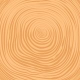 Vector crosscut tree rings background Royalty Free Stock Photos