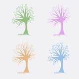Vector cuatro árboles que simbolizan las cuatro estaciones verano, otoño, invierno y primavera Fotografía de archivo