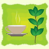 Vector cup of green tea. And tea leaf Stock Images