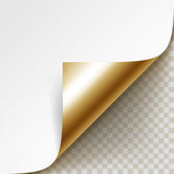 Vector Curled Golden Corner of White Paper with Shadow Mock up Close up  on Background Stock Image
