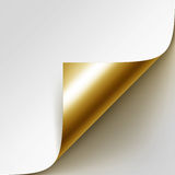 Vector Curled Golden Corner of White Paper with Shadow Mock up  on White Background Stock Photo