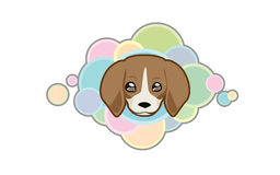 Vector cute Beagle head. Vector illustration Dog & x27;s head in cartoon style Royalty Free Stock Image