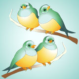 Vector cute birds Stock Image