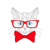 Vector cute cat portrait with hipster glasses. Hand drawn kitty Stock Photo