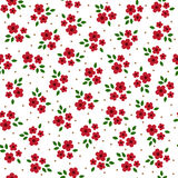 Vector cute colorful flowers seamless pattern Royalty Free Stock Photography