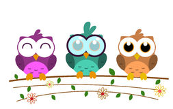 Vector cute colorful owl cartoon with big eyes. And beautiful illustrative environment stock illustration