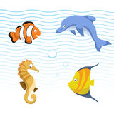Vector cute different sea and ocean animals set. Colorful striped fish, seahorse, clown fish, dolphin. Vector cute different sea and ocean animals set. Isolated Royalty Free Stock Image