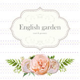 Vector Cute floral square design frame with garden rose fern gre Stock Images