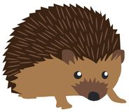 Vector Cute Hedgehog Isolated on White Background Royalty Free Stock Images