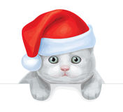Vector of cute kitten in Santas hat hiding by blan Stock Photography