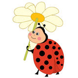 Vector Cute Ladybug With Flower, Ladybird Clipart. Vector cute cartoon funny ladybug with flower, insect, ladybird clipart, vector illustration Royalty Free Stock Photography