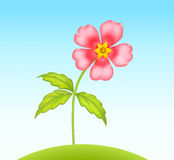 Vector cute little flower. Pink little flower growing at green summer hill royalty free illustration