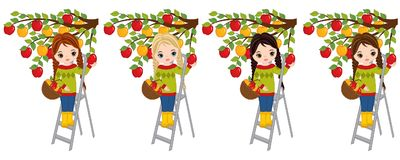 Vector Cute Little Girls Picking Apples from the Tree. Vector little girls with various hair colors. Vector little girl. Little girls with apples vector Stock Photos