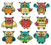 Vector cute owls cartoons isolated. Royalty Free Stock Images