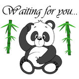Vector cute panda on white background. Stock Image