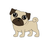 Vector of a cute pug Royalty Free Stock Images
