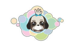 Vector cute shih tzu head. Vector illustration Dog `s head in cartoon style Vector Illustration