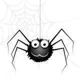 Vector cute spider Stock Photos