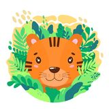 Vector cute tiger face in the jungle. For print on a T-shirt, a picture in the nursery. Illustration Royalty Free Stock Photography