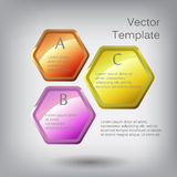 Vector 3d hexagon elements for infographic. With icons Royalty Free Stock Photography