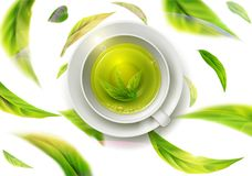 Vector 3d illustration with green tea leaves in motion on a whit. E background and  ceramic mug with saucer with green tea. Element for design, advertising Royalty Free Stock Photos